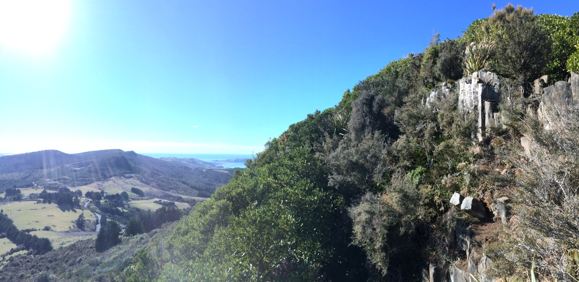 view of Dunedin outlying and the Otago Peninsu;la from the Organ Pipes/Mount Cargill Track