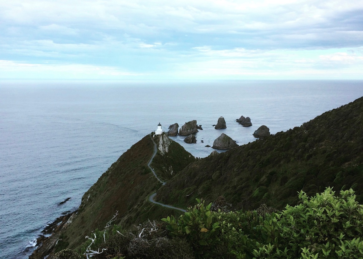 nugget point, hiking in new zealand, hikes in new zealand, walking in the catlins, hiking in the catlins, the catlins, new zealand, what to do in new zealand
