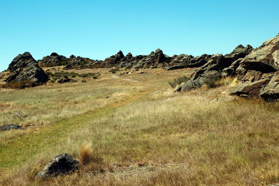 rock and pillar range, dunedin, hiking in new zealand, what to do in dunedin, what to do in new zealand, hikes near dunedin