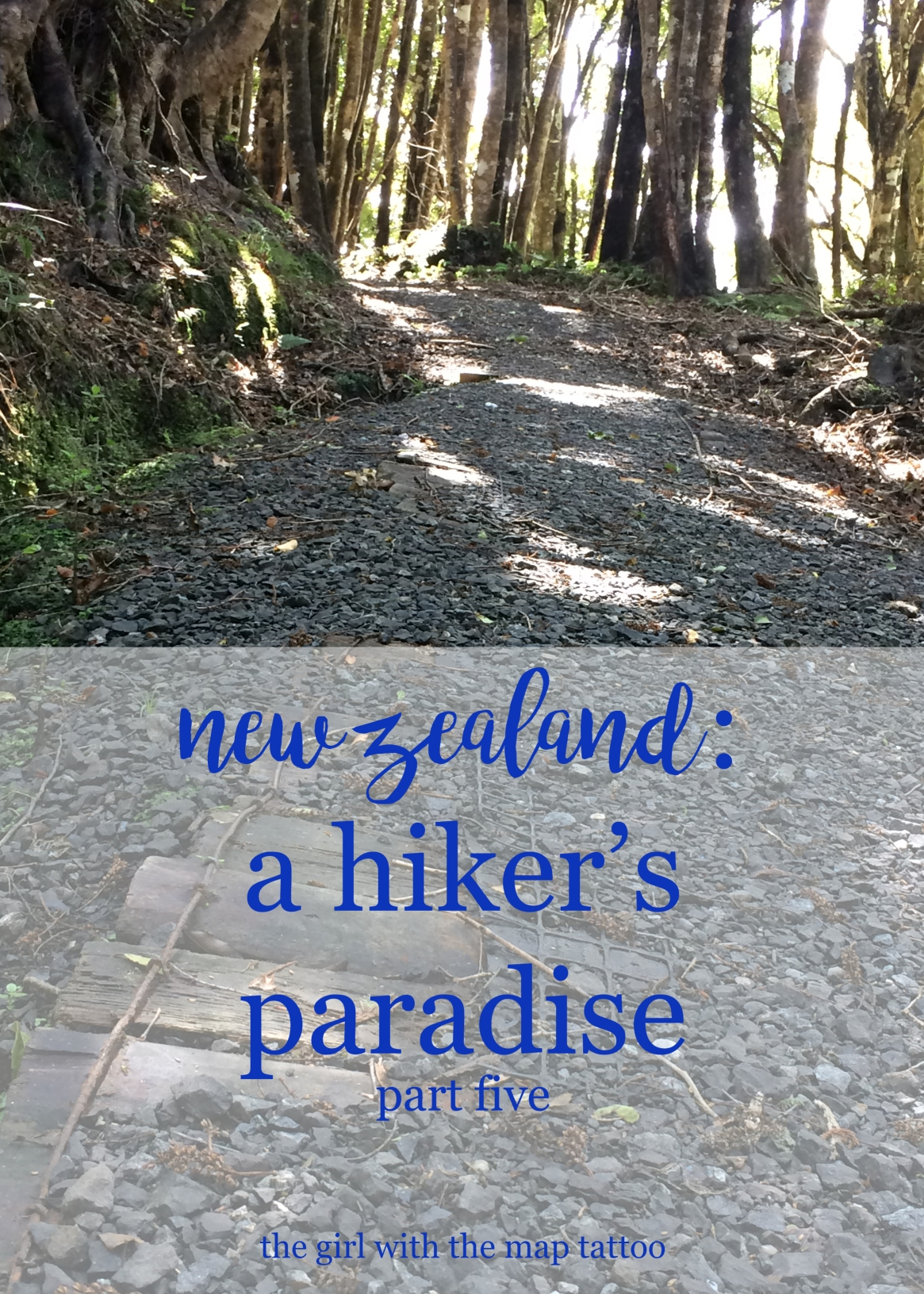 hiking in New Zealand, part five: South Island hikes