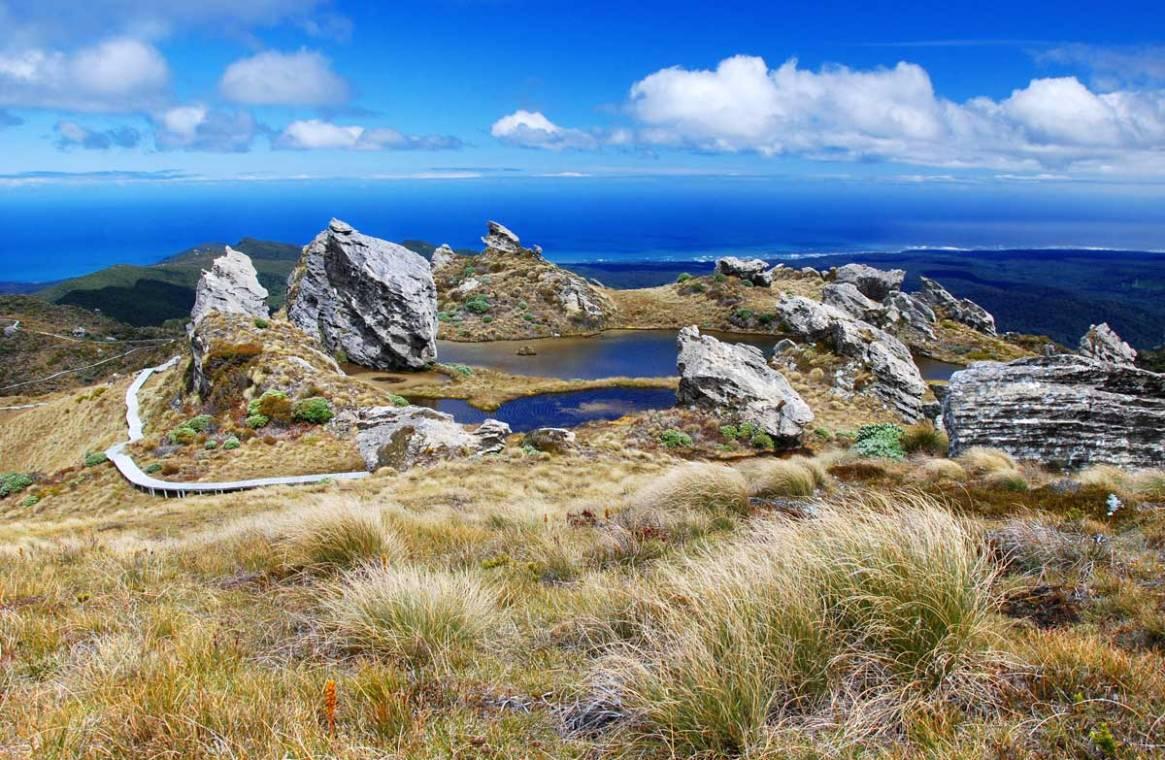 the Hump Ridge Track, Fiordland, New Zealand